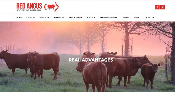 Red Angus Society Australia