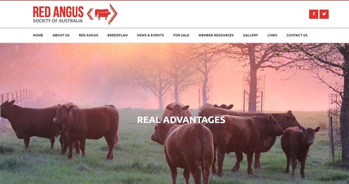 Red Angus Society Australia